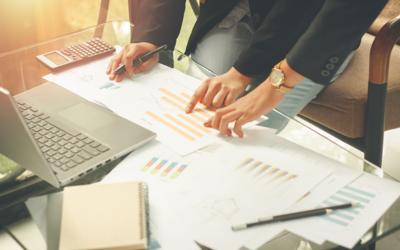 O que é a Informação Empresarial Simplificada (IES)?